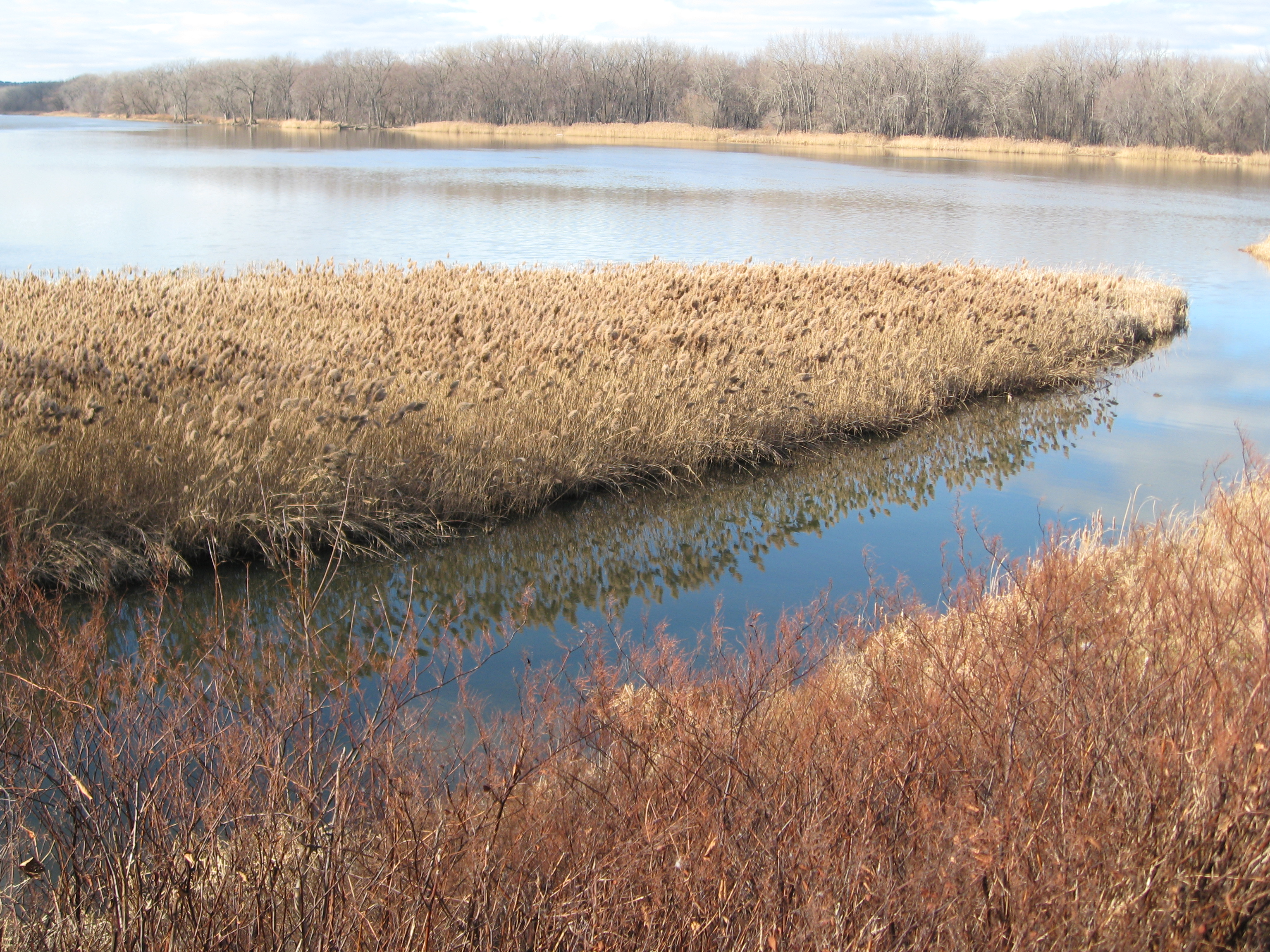 Mohawk River: beauty in browns and blues.