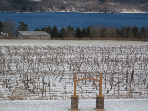 Seneca Lake warmed by the sun, readying for the end of winter, and then spring!