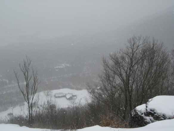 Snow storm on the Escarpment; Thacher Park.