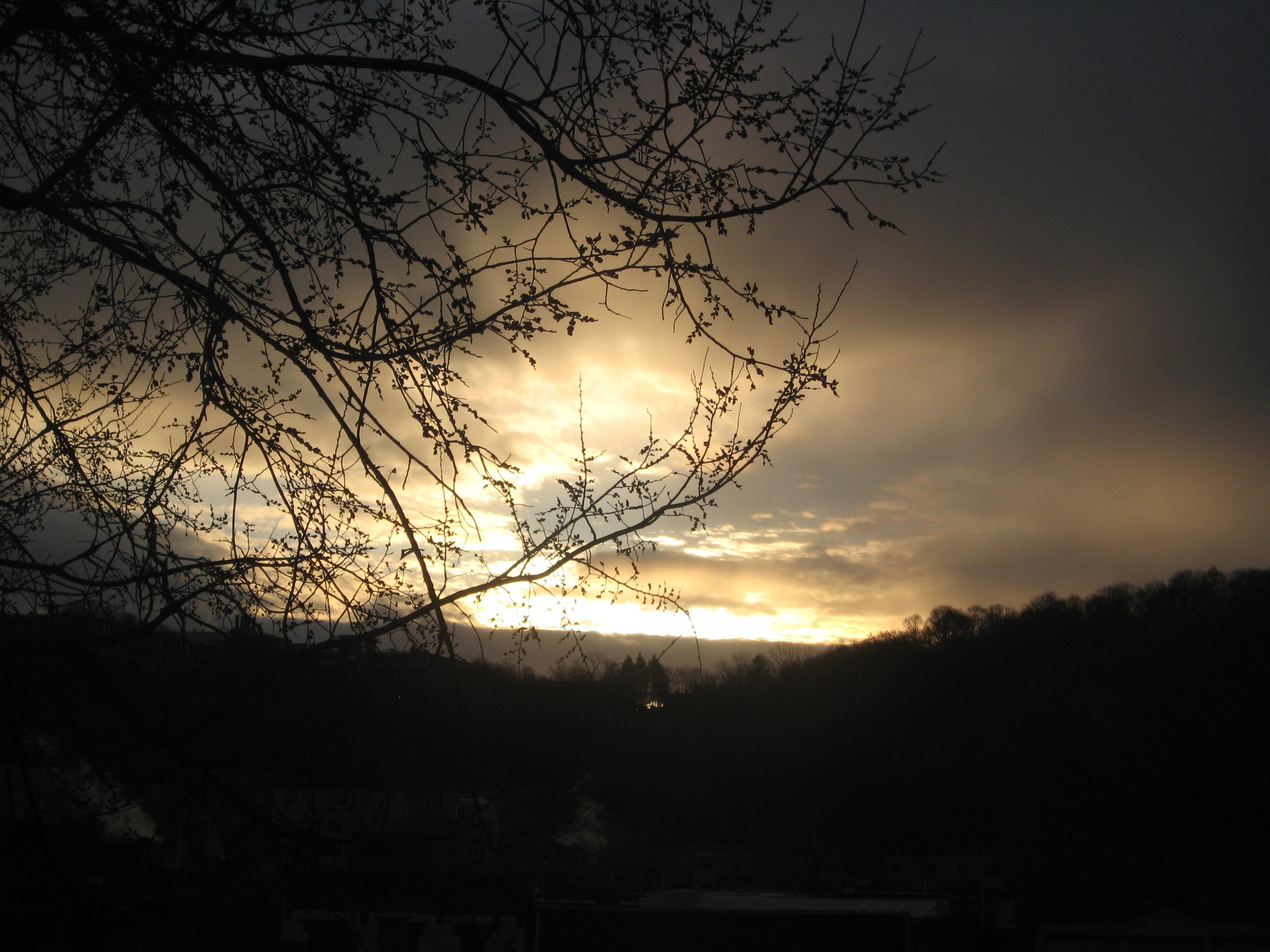 Warm spring sunrise