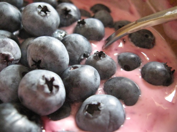 This season's blueberries, floating on top of home-made blackberry preserves blended into Greek yogurt.